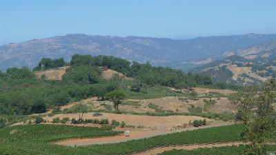 Ukiah Residential Lots & Land For Sale: 4801 State Highway 20 Highway