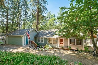 Lake County Single Family Home For Sale: 12291 Black Oak Drive