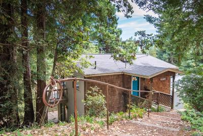 Gualala Single Family Home For Sale: 45681 Pacific Woods Road