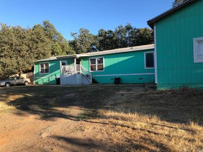 Clearlake Single Family Home For Sale: 16309 28th Avenue