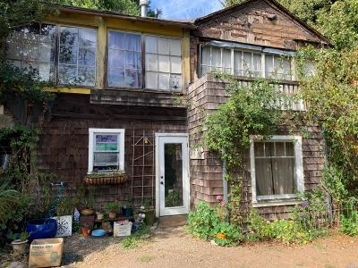 Mill Valley Single Family Home For Sale: 192 Adams Avenue