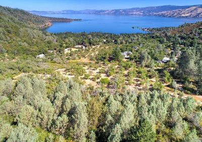 Kelseyville CA Residential Lots & Land For Sale: $444,500