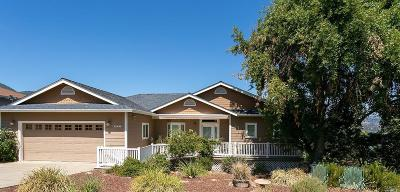 Kelseyville Single Family Home For Sale: 10496 Edgewater Drive