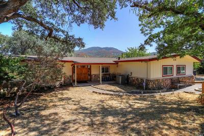 Kelseyville Single Family Home For Sale: 4560 Valley Drive