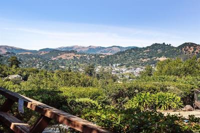 San Rafael Single Family Home For Sale: 38 Twain Harte Lane