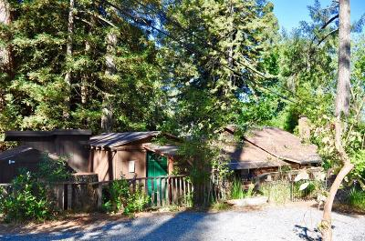 Single Family Home For Sale: 10530 Woodside Drive