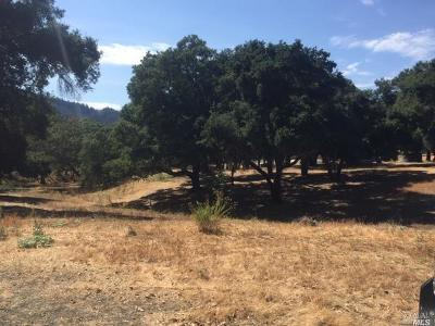 Calistoga Residential Lots & Land For Sale: 8655 Franz Valley School Road