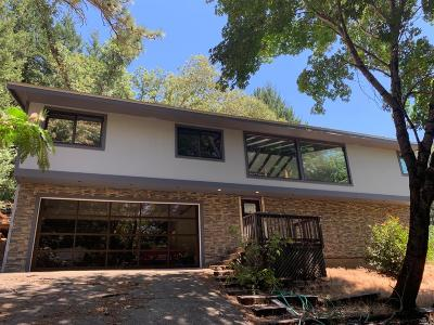 Calistoga Single Family Home For Sale: 4580 Lake County Highway