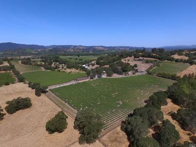 Sonoma County Residential Lots & Land For Sale: 7990 Eastside Road