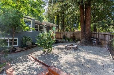Healdsburg Single Family Home For Sale: 2094 Redwood Drive