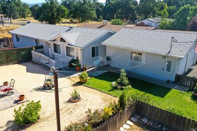 Lakeport Single Family Home For Sale: 348 Rainbow Road