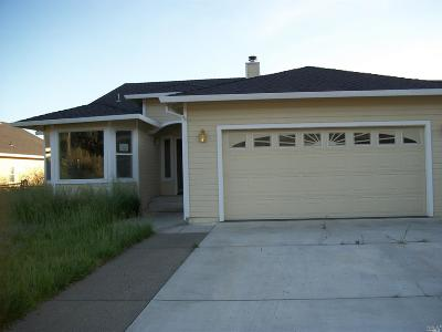 Hidden Valley Lake Single Family Home For Sale: 19767 Mountain Meadow North