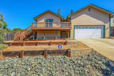 Kelseyville Single Family Home For Sale: 5368 Olympia Drive