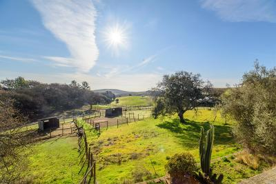 Napa Single Family Home For Sale: 5945 Haire Lane