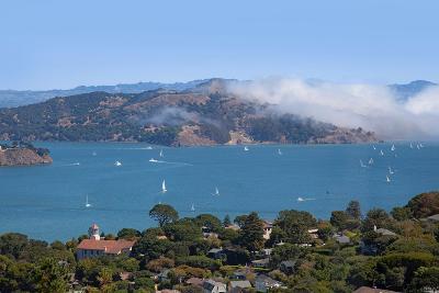 Sausalito Single Family Home For Sale: 83 Monte Mar Drive