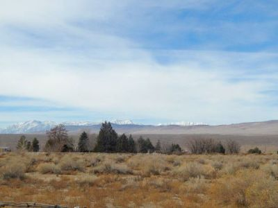 Bishop Residential Lots & Land For Sale: 14495 Highway 6