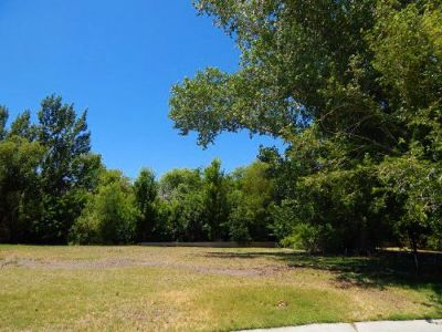 Big Pine Residential Lots & Land For Sale: 125 Olivia Ln