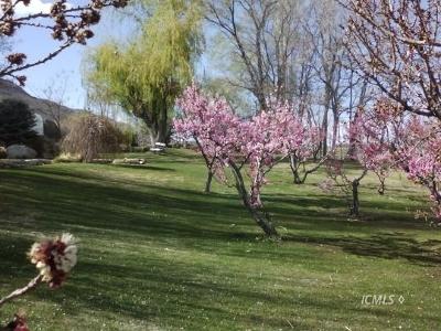 Big Pine, Bishop Residential Lots & Land For Sale: 475 Sierra Grande