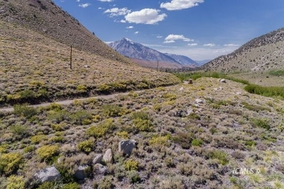 Bishop CA Residential Lots & Land For Sale: $460,000