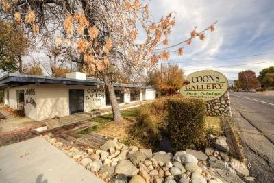 Bishop Single Family Home For Sale: 2399 N Sierra Hwy.