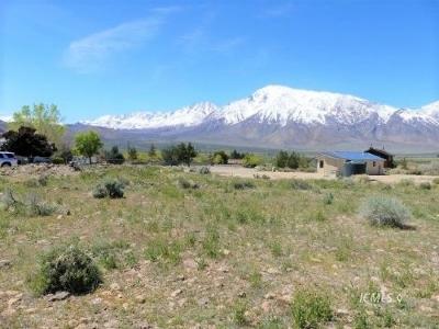Big Pine, Bishop Residential Lots & Land For Sale: 397 Arboles Dr