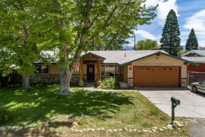 Bishop Single Family Home For Sale: 377 Wildrose Lane