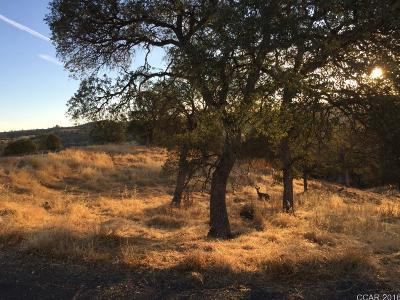 Calaveras County Residential Lots & Land For Sale: 4257 Council Trl #2058