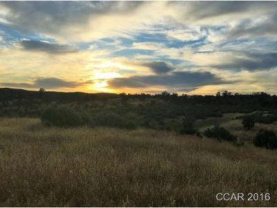 Calaveras County, Tuolumne County Residential Lots & Land For Sale: 4877 Buckboard #51