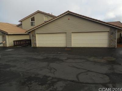 Murphys Single Family Home For Sale: 828 Laurel Ridge Ct