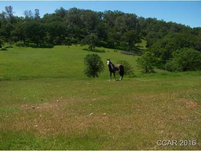 Ione Residential Lots & Land For Sale: 4471 Buena Vista Road