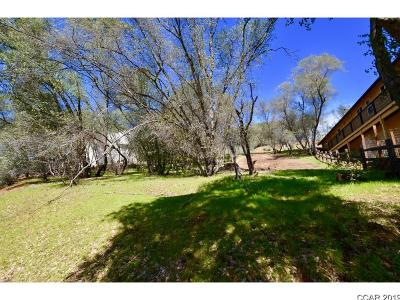Angels Camp Residential Lots & Land For Sale: Lot 295 Mary Belle #--