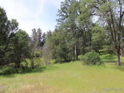 Copperopolis Residential Lots & Land For Sale: 1071 Feather Ct #22,23