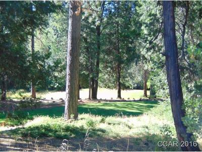 Murphys Residential Lots & Land For Sale: 00 Forest Meadows Drive #2B