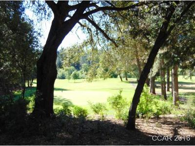 Murphys Residential Lots & Land For Sale: Forest Meadows Drive #2B20