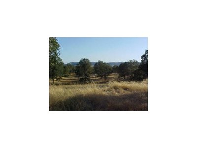 Residential Lots & Land For Sale: 2820 Arrowhead #310