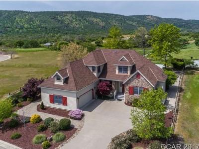 Ghc - Greenhorn Creek, Sad - Saddle Creek Subdivision, Fms - Forest Meadows Single Family Home For Sale: 120 Hawkridge