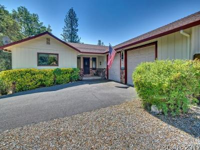 Angels Camp Single Family Home For Sale: 1240 Suzanne Dr