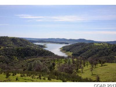 Angels Camp Residential Lots & Land For Sale: White Oak Ranch Rd #77