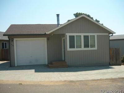 Copperopolis Single Family Home For Sale: 1039 Iriquois