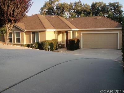 Angels Camp Single Family Home For Sale: 1005 Stelte Ct