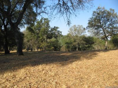 Calaveras County Residential Lots & Land For Sale: 22 Council Trail #22