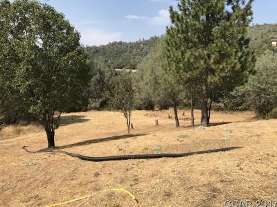 Jamestown CA Residential Lots & Land For Sale: $69,500
