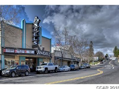 Angels Camp Commercial For Sale: 1230 S. Main St