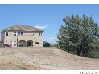 Valley Springs Single Family Home For Sale: 3363 Hagen