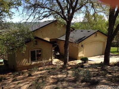 Copperopolis Single Family Home For Sale: 4695 Tewa Court