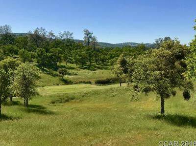 Calaveras County Residential Lots & Land For Sale: 156 Oak Wood Ct #360