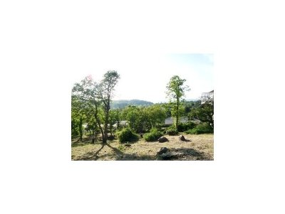 Residential Lots & Land For Sale: 20890 Lawler #193