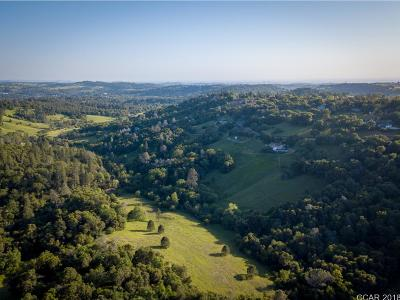 Amador County Residential Lots & Land For Sale: Running Gold Rd