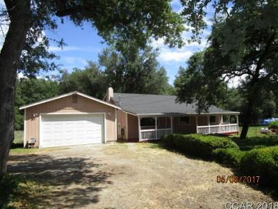 Valley Springs Single Family Home For Sale: 7175 Baldwin Street