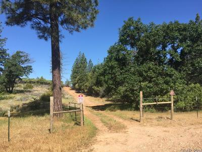 Murphys Residential Lots & Land For Sale: Sheep Ranch Rd #29